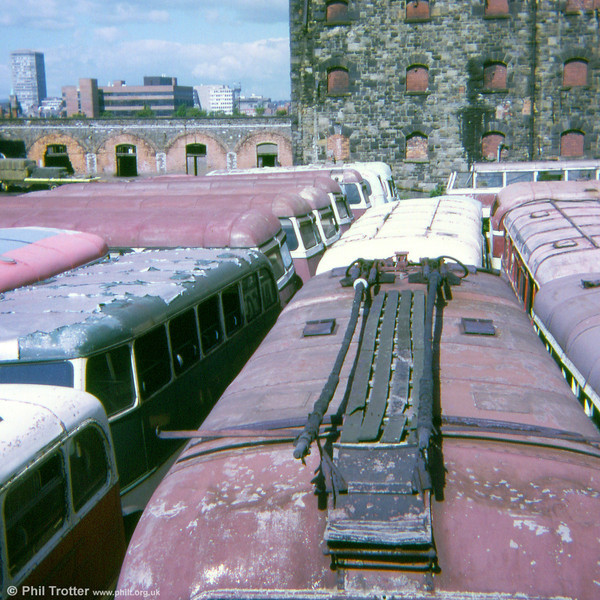 There were so many buses squashed into Way's scrapyard at close proximity that it was possible to walk across the yard, jumping from roof to roof!