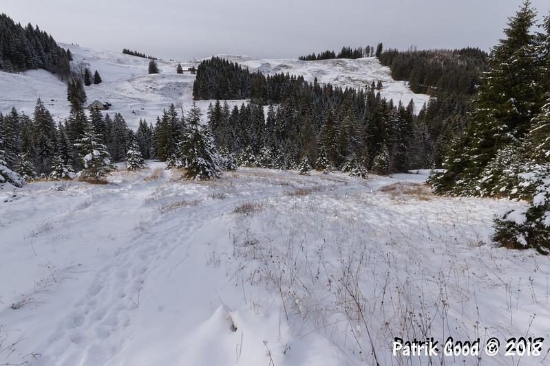 Chüeffershütte, Feldimoos, Chridegg