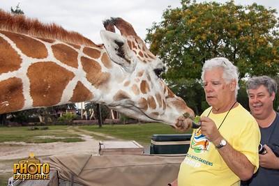 Busch Gardens Overnight – Photo Experience May 11, 2014  - Sarasota Floridfa