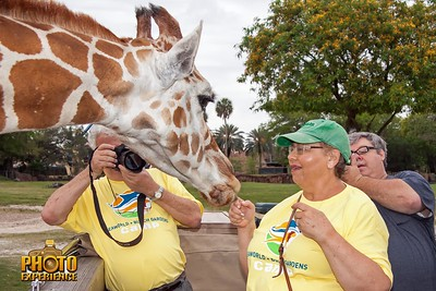 Busch Gardens Overnight – Photo Experience May 11, 2014  - Sarasota Floridfa