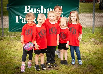 Bushnell Park District