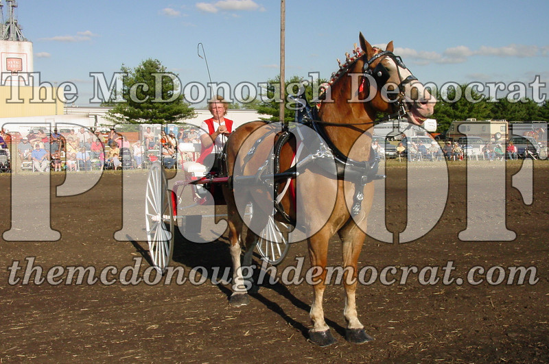 Bushnell Horse Show 2005 023