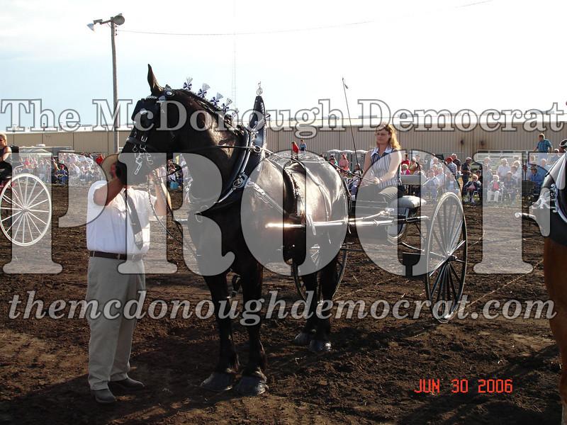 Bushnell Horse Show 2006-1 094