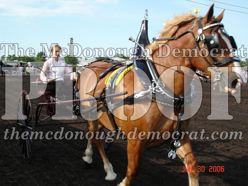 Bushnell Horse Show 2006-1 090