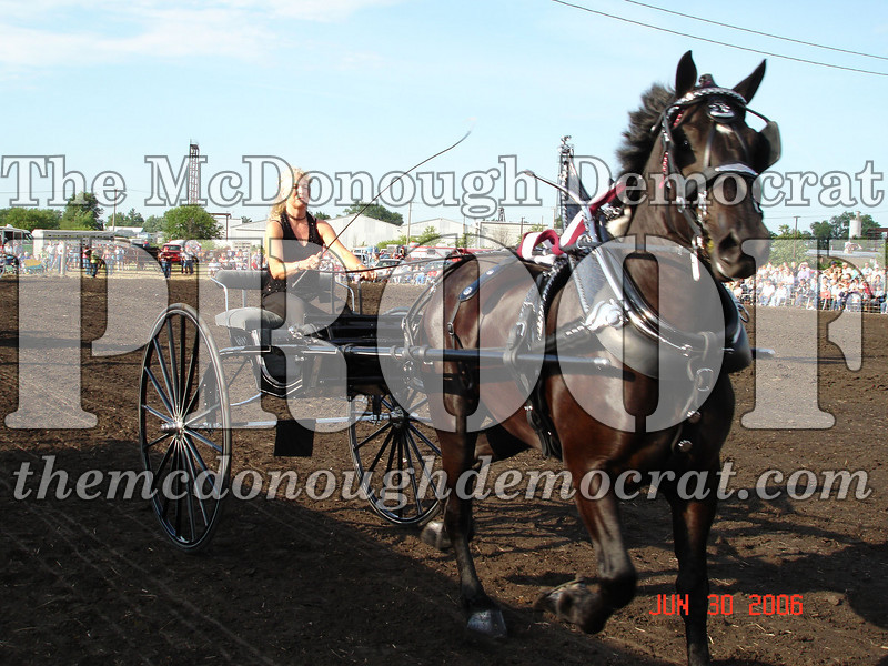 Bushnell Horse Show 2006-1 085