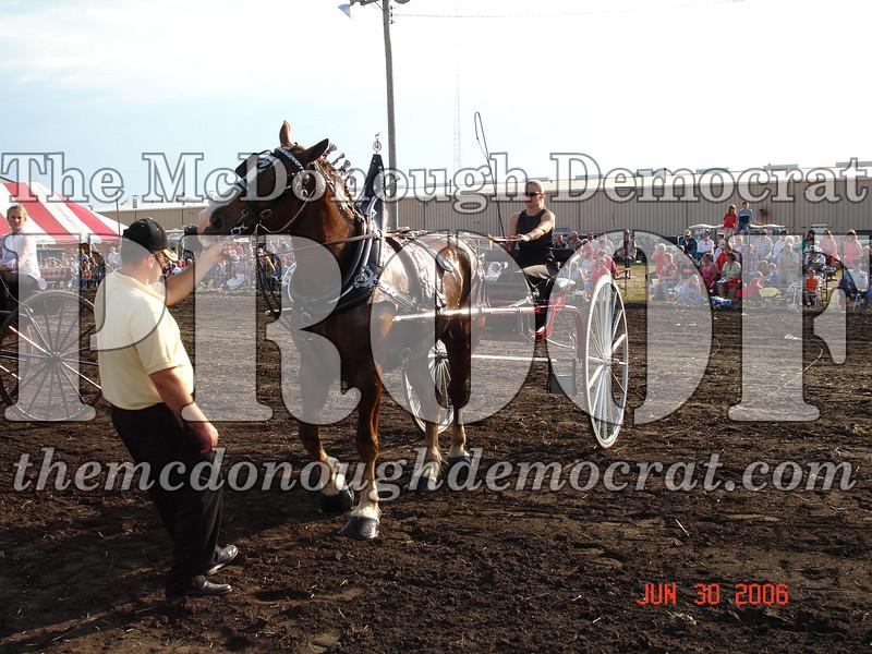 Bushnell Horse Show 2006-1 095