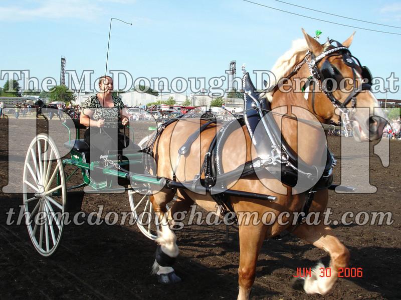 Bushnell Horse Show 2006-1 086