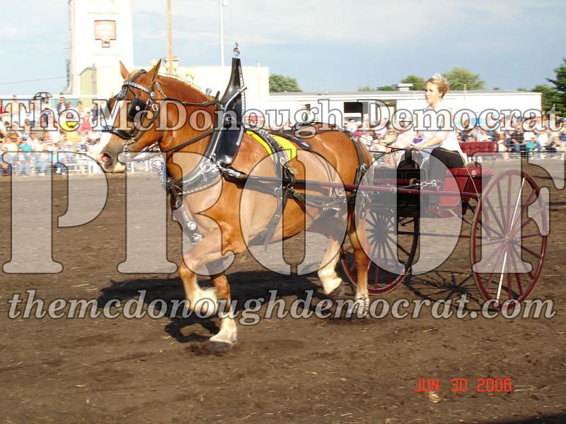 Bushnell Horse Show 2006-1 092