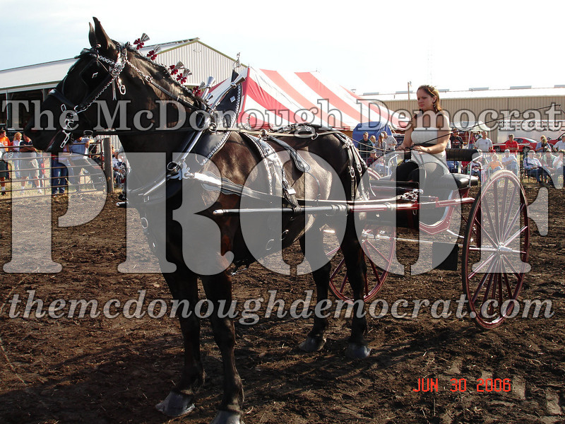 Bushnell Horse Show 2006-1 102