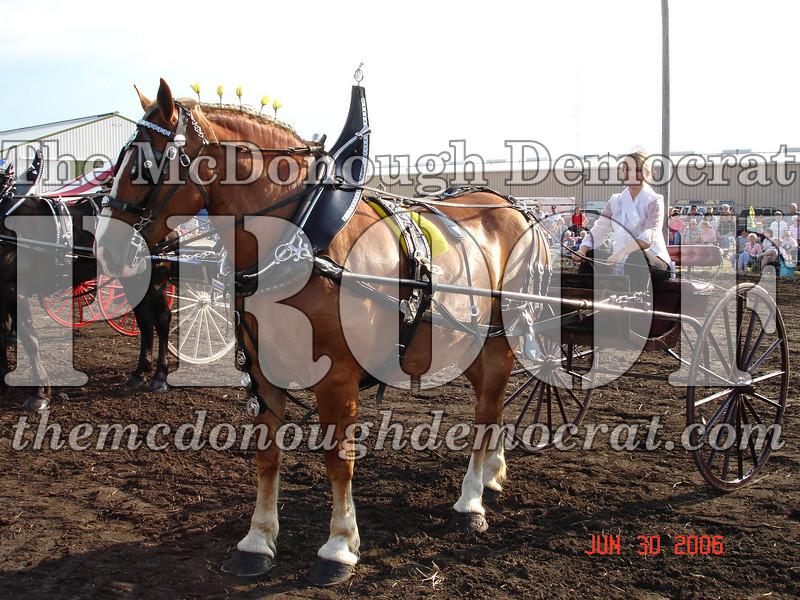 Bushnell Horse Show 2006-1 096
