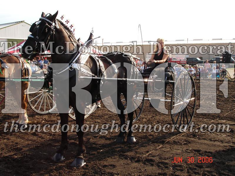 Bushnell Horse Show 2006-1 100