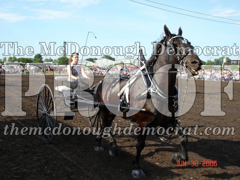 Bushnell Horse Show 2006-1 079