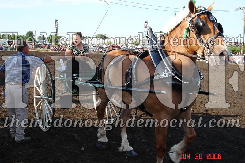 Bushnell Horse Show 2006-1 109
