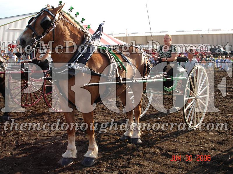 Bushnell Horse Show 2006-1 101