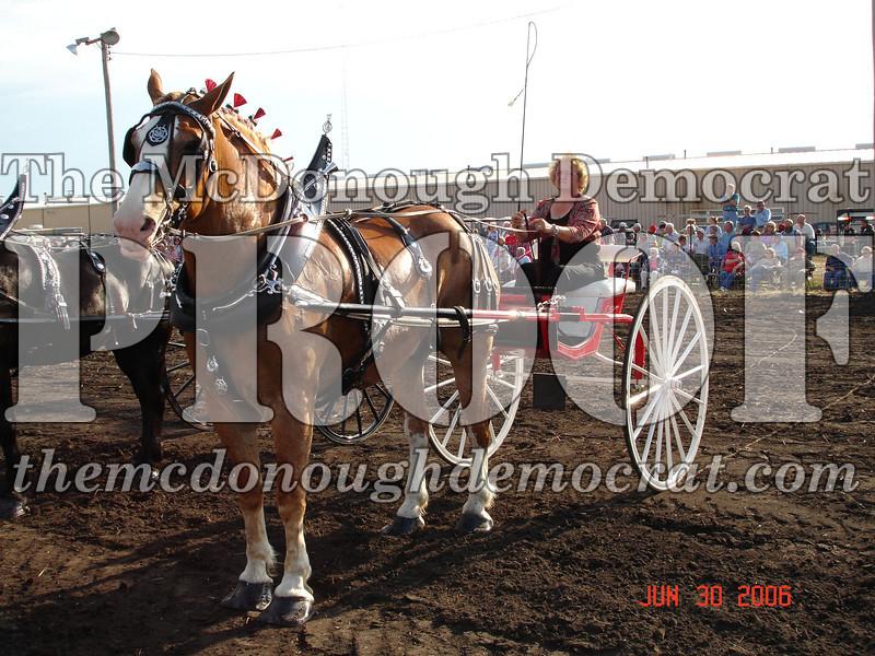 Bushnell Horse Show 2006-1 093