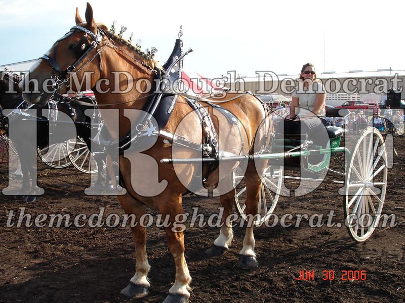 Bushnell Horse Show 2006-1 099