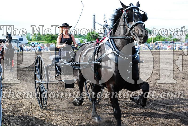 Horse Show 2007 06-29-07 036