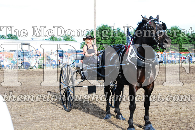Horse Show 2007 06-29-07 044