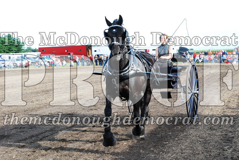 Horse Show 2007 06-29-07 042