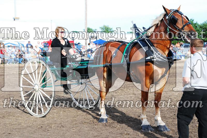 Horse Show 2007 06-29-07 051