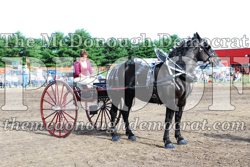 Horse Show 2007 06-29-07 043