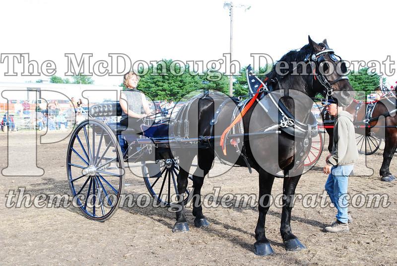 Horse Show 2007 06-29-07 046