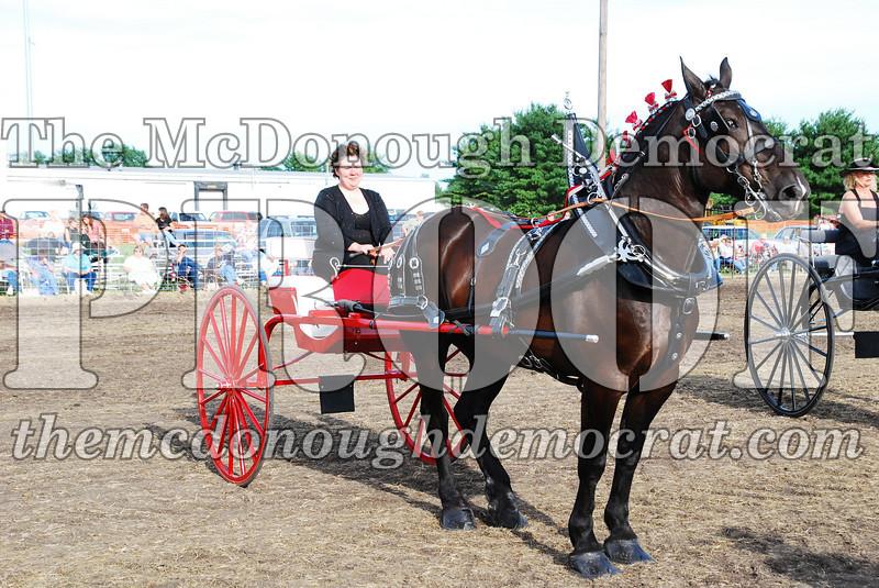 Horse Show 2007 06-29-07 045