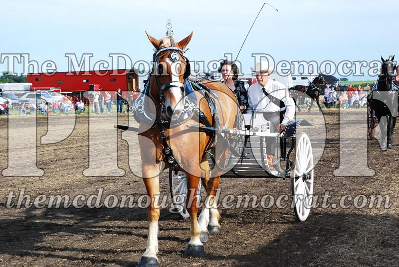 Horse Show 2007 06-29-07 038