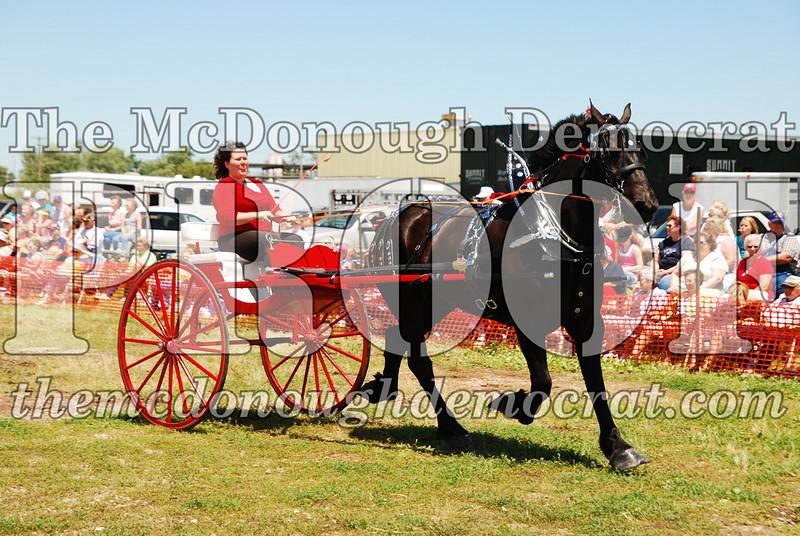 Horse Show 2008 06-28-08 051