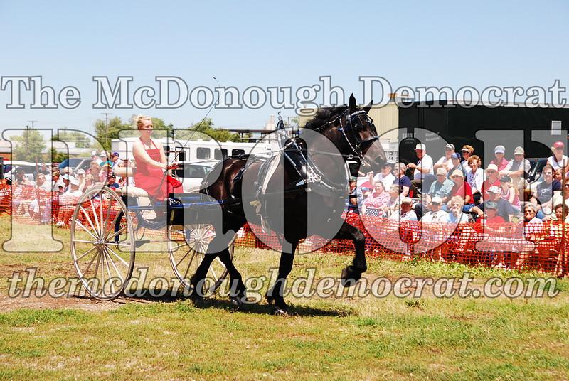 Horse Show 2008 06-28-08 042