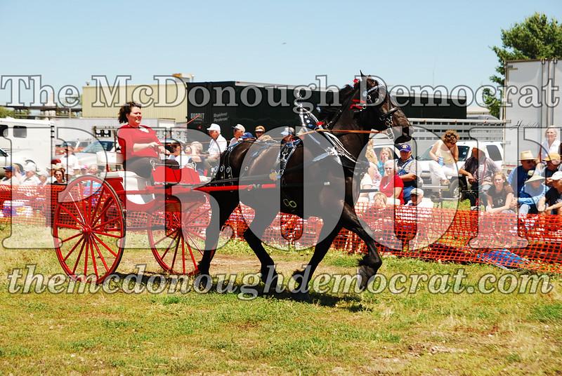 Horse Show 2008 06-28-08 067