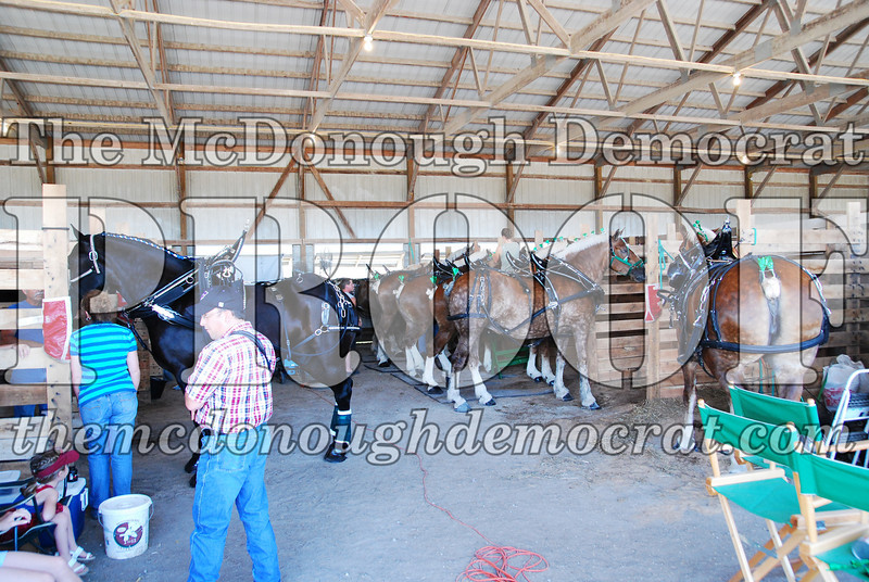 Horse Show 2008 06-28-08 018