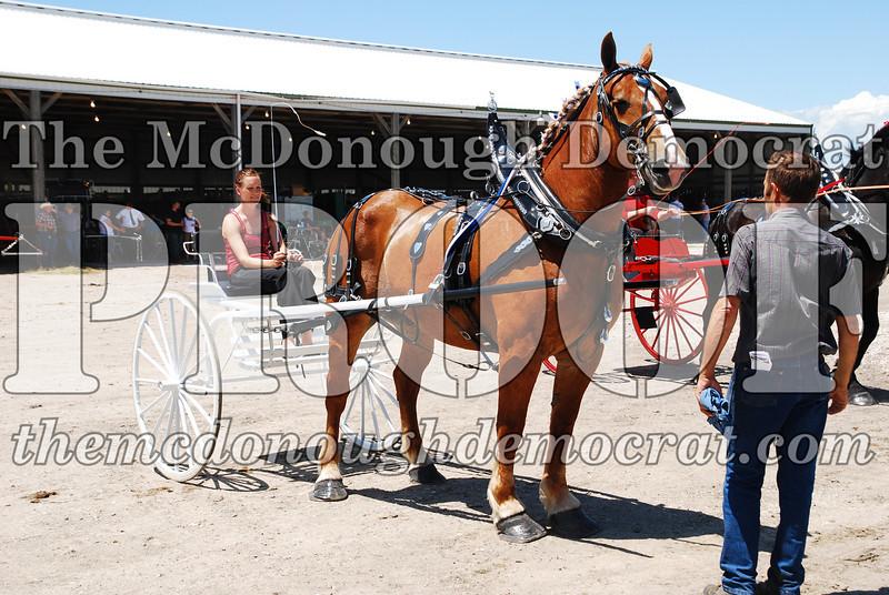 Horse Show 2008 06-28-08 079