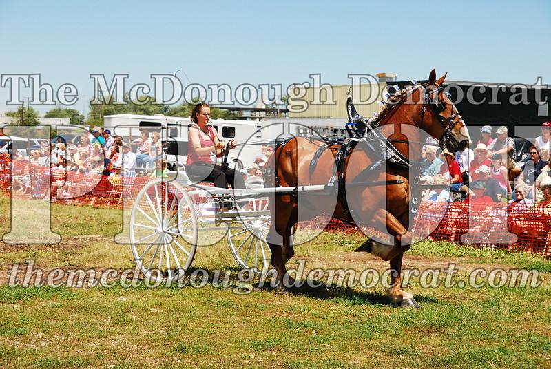 Horse Show 2008 06-28-08 068
