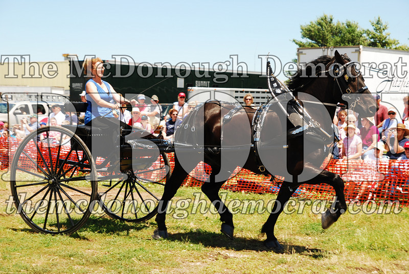 Horse Show 2008 06-28-08 046