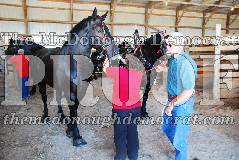 Horse Show 2008 06-28-08 021
