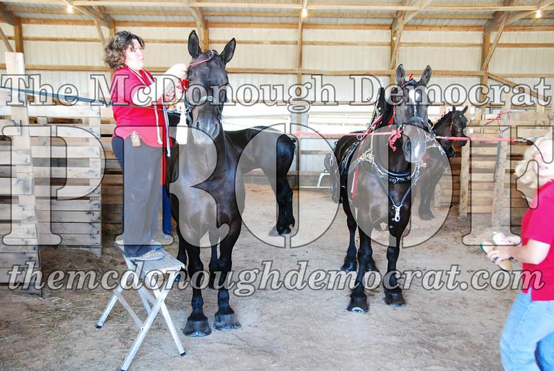 Horse Show 2008 06-28-08 023