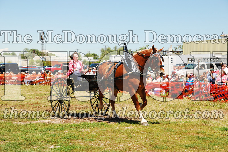 Horse Show 2008 06-28-08 060