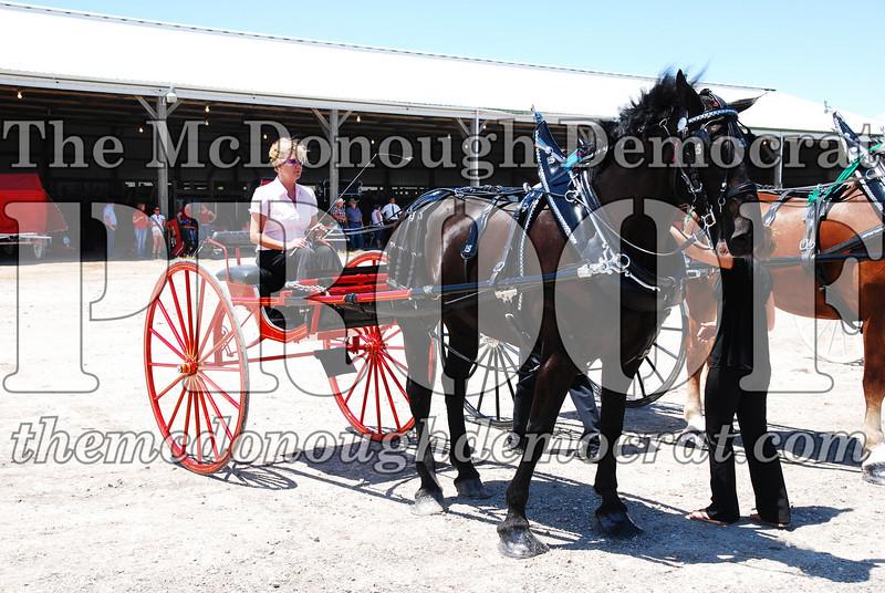 Horse Show 2008 06-28-08 082