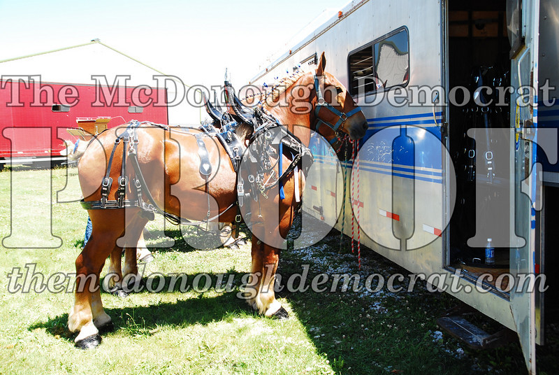 Horse Show 2008 06-28-08 006