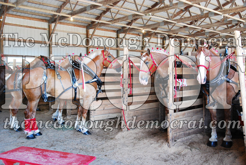 Horse Show 2008 06-28-08 013