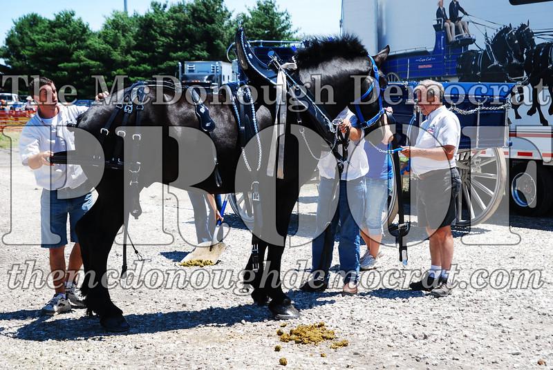 Horse Show 2008 06-28-08 009