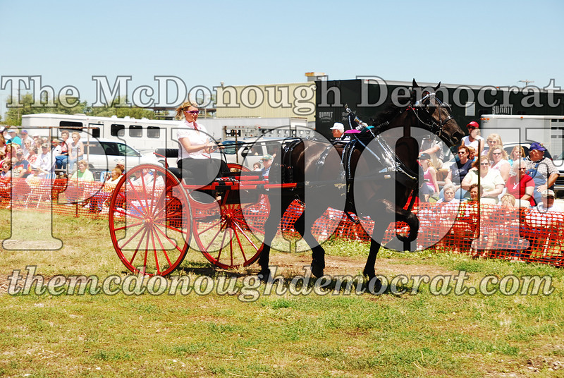 Horse Show 2008 06-28-08 070