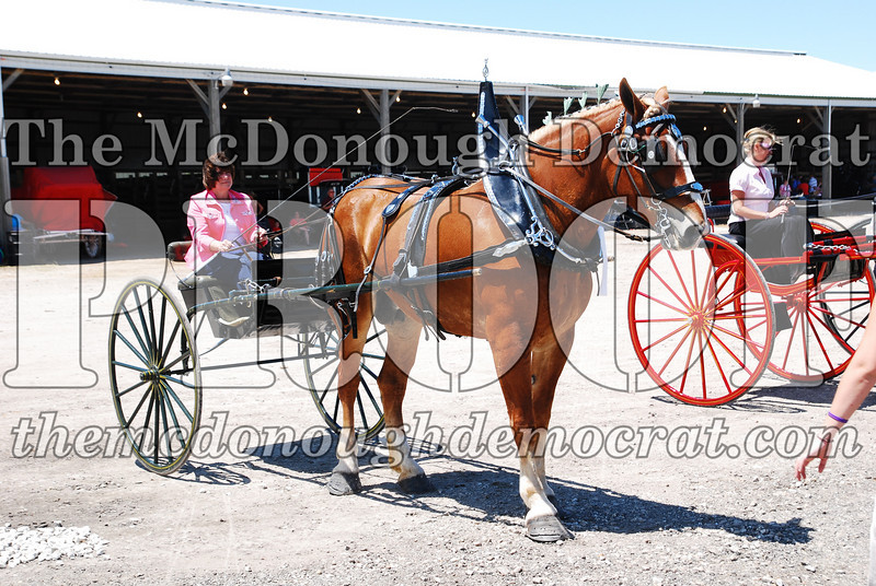 Horse Show 2008 06-28-08 083