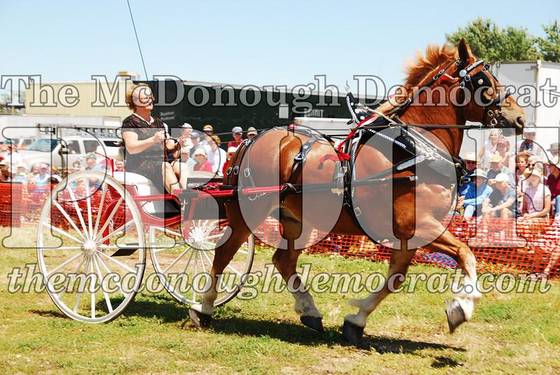 Horse Show 2008 06-28-08 066