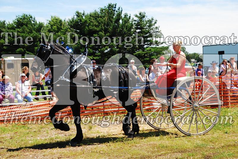 Horse Show 2008 06-28-08 040