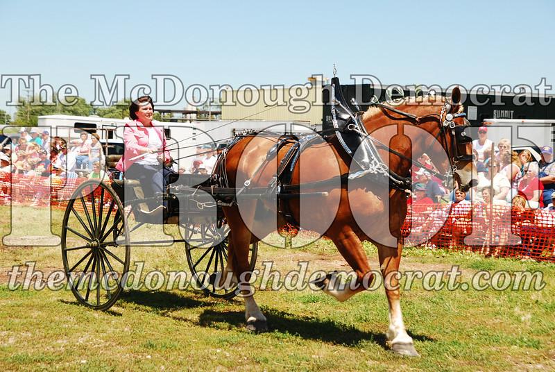 Horse Show 2008 06-28-08 061