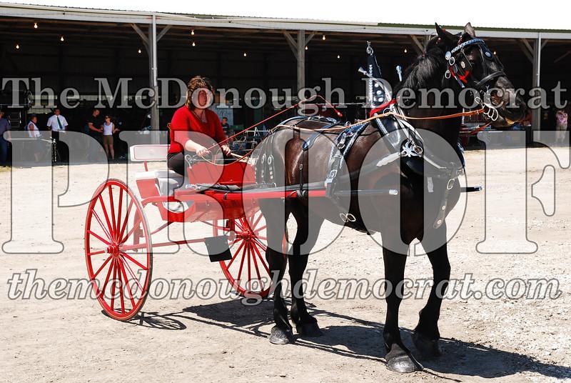 Horse Show 2008 06-28-08 077