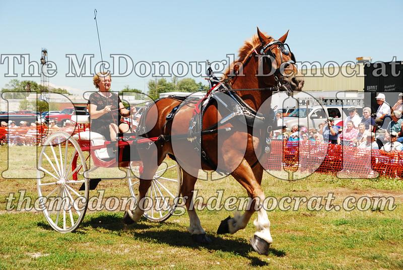 Horse Show 2008 06-28-08 048