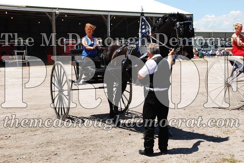 Horse Show 2008 06-28-08 074